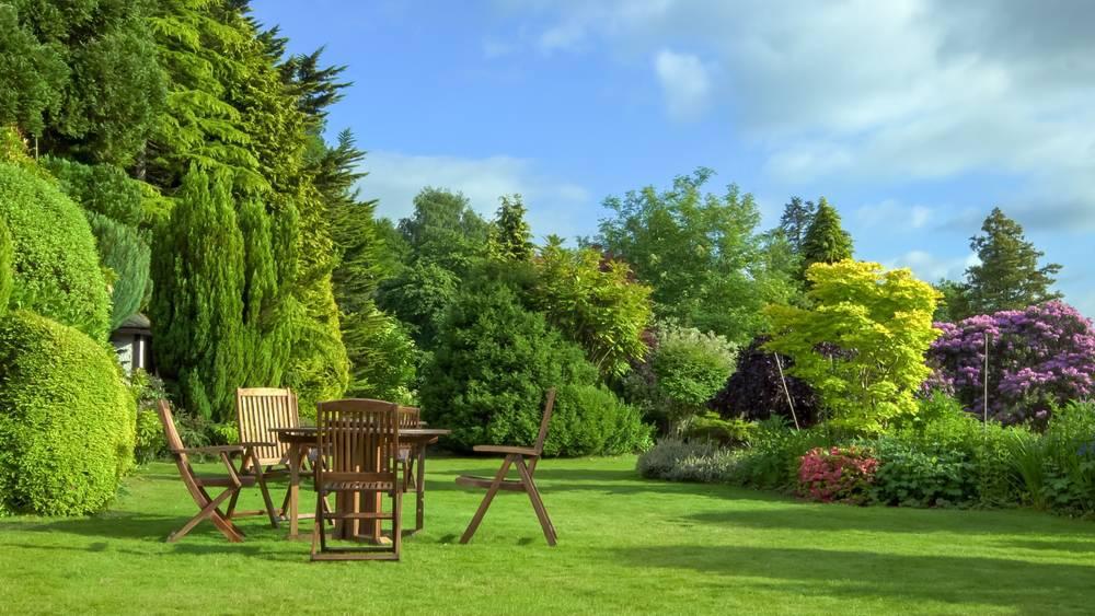 Qué necesitas para tener tu jardín cuidado y dónde adquirirlo